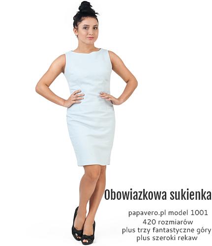 model-1001-S.jpg